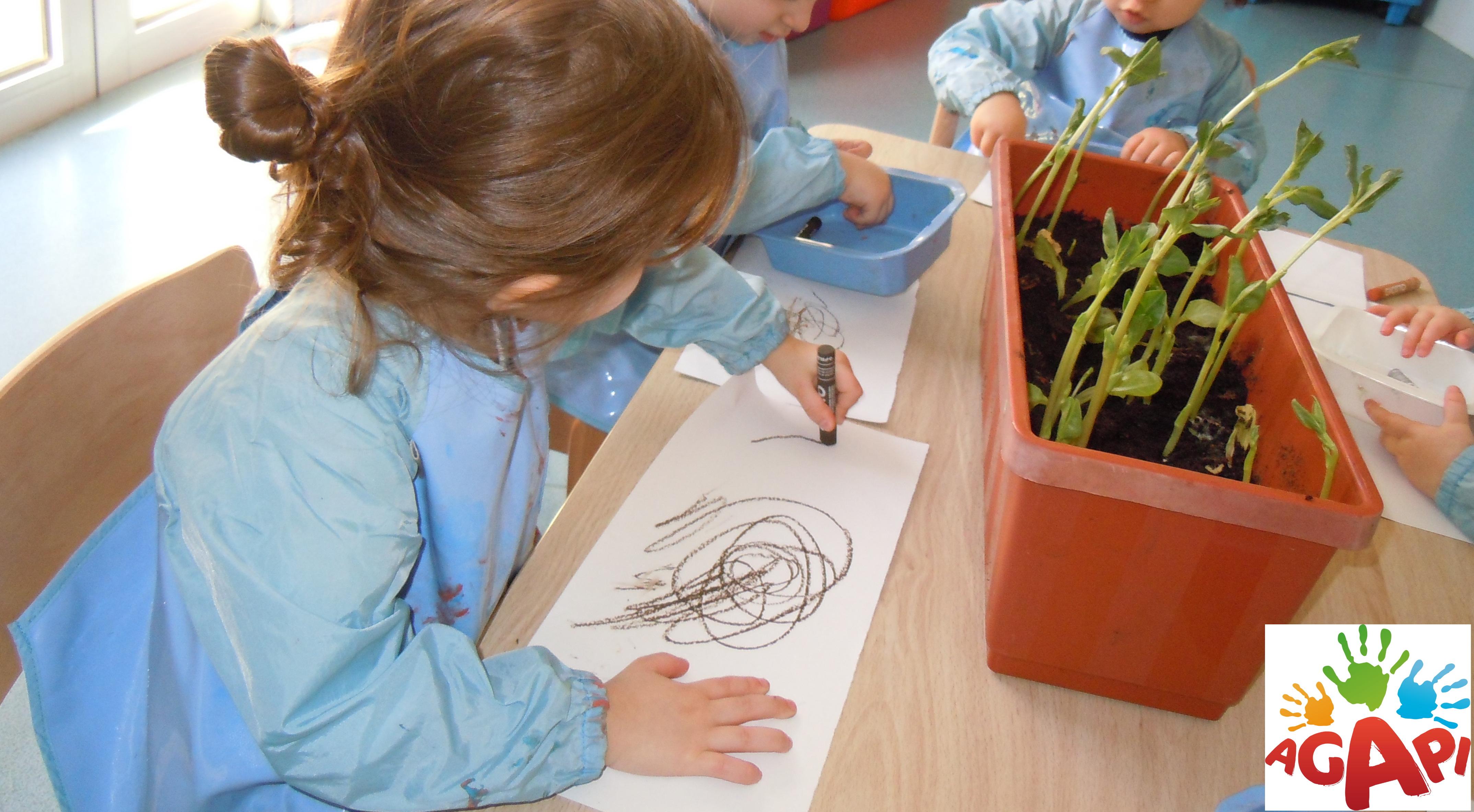 atelier dessin nature
