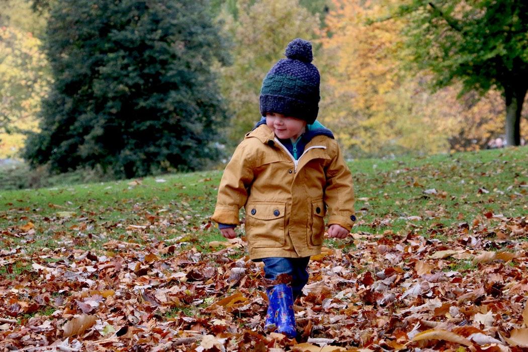 petit garçon qui marche dans les feuilles