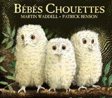 Livre Bébés Chouettes