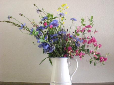 vase avec fleurs des champs