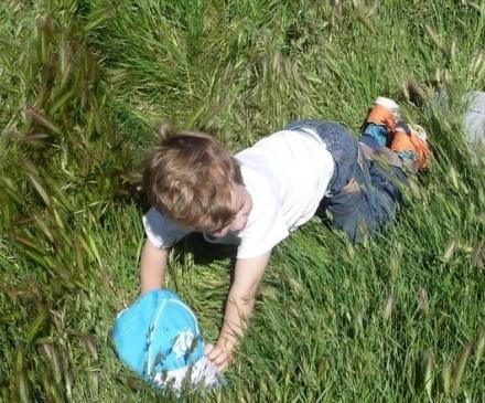 Enfants qui jouent dans l'herbe