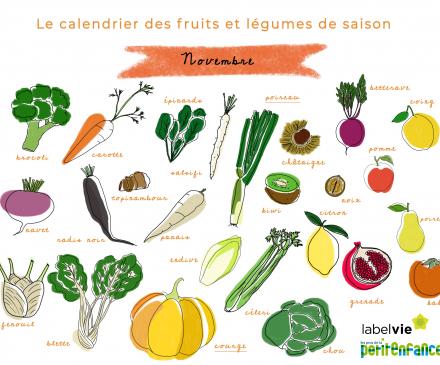 Calendrier des fruits et légumes de saison de novembre