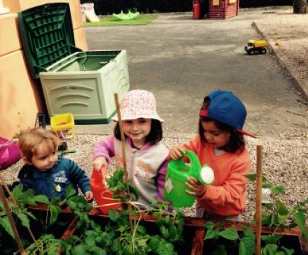 enfants arrosent plantes