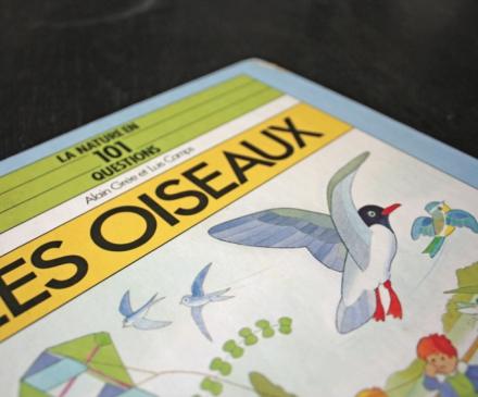 Livre Les oiseaux d'Alain Grée