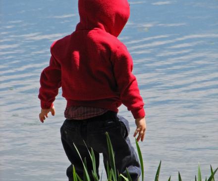 tout-petit devant eau