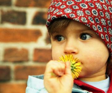 enfant tenant une fleur