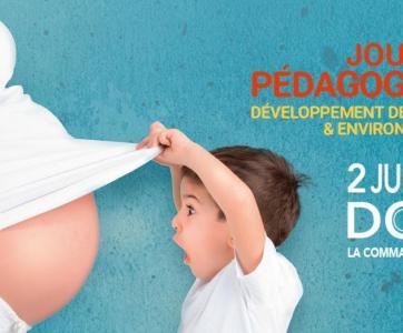 2 juillet 2021 : Journée pédagogique de Dole « Développement de l'enfant et Environnements »