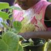 enfant dans la végétation