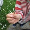coccinelle main d'enfant