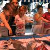enfants découvrant le marché